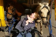 Dione-bij-paarden