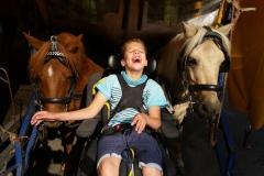 Olivier-bij-paarden